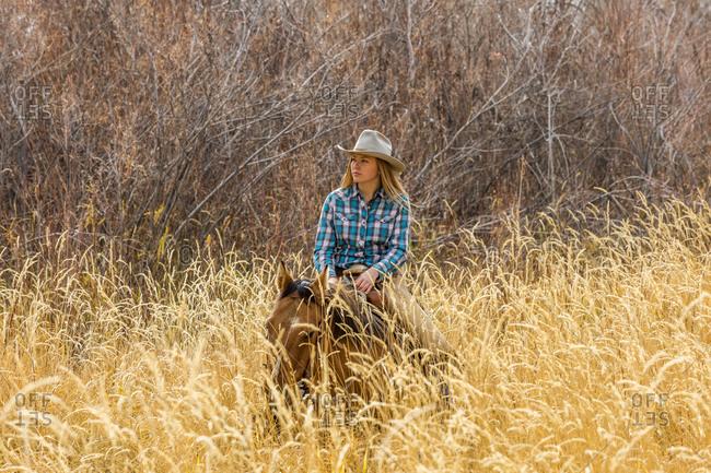 Teenage girl horseback riding in wheat field
