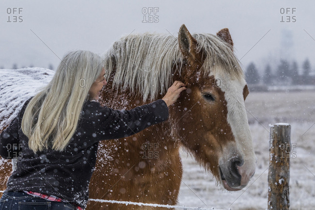 Woman petting horse on farm during winter