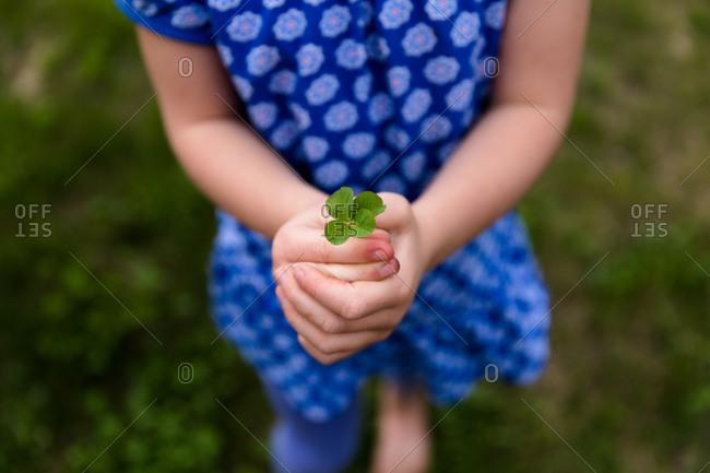 Child holding a four leaf clover