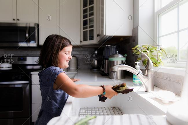 Little girl washing lettuce leaves in the sink