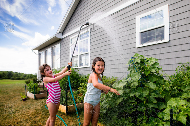 Girls playing with water hose while watering garden
