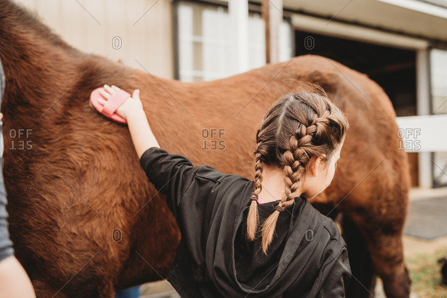 Tween girl brushing a horse's hair