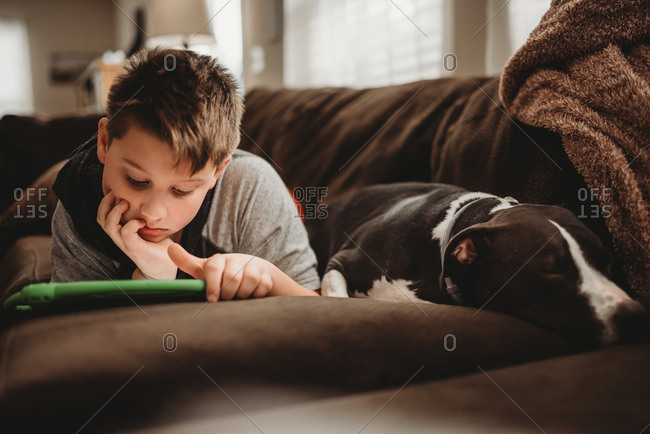 Boy playing on tablet while lying on sofa by dog