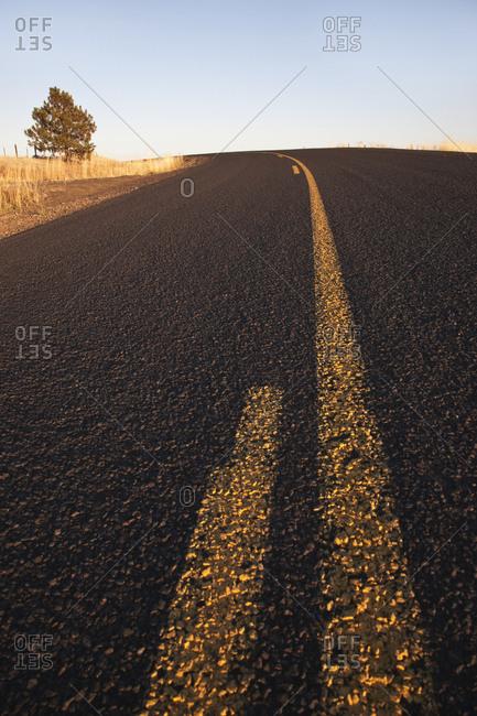 Two Lane Road Between Fields,Washington, USA