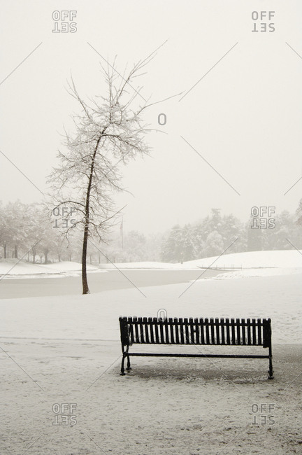 Empty Park Bench in Snow