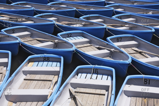 Row Boats For Hire
