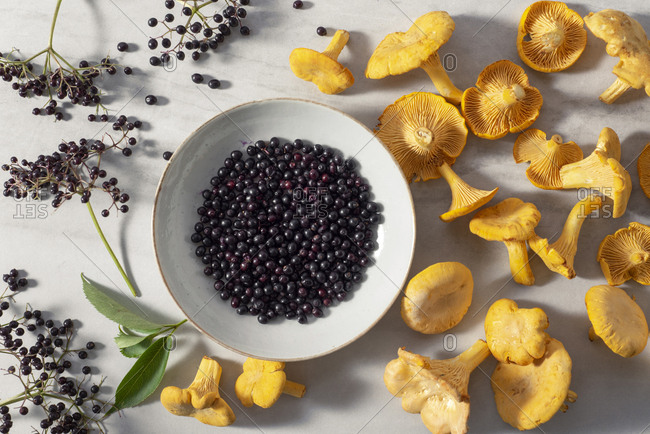 Freshly foraged elderberries and yellow chanterelles in a bowl and on a marble surface.