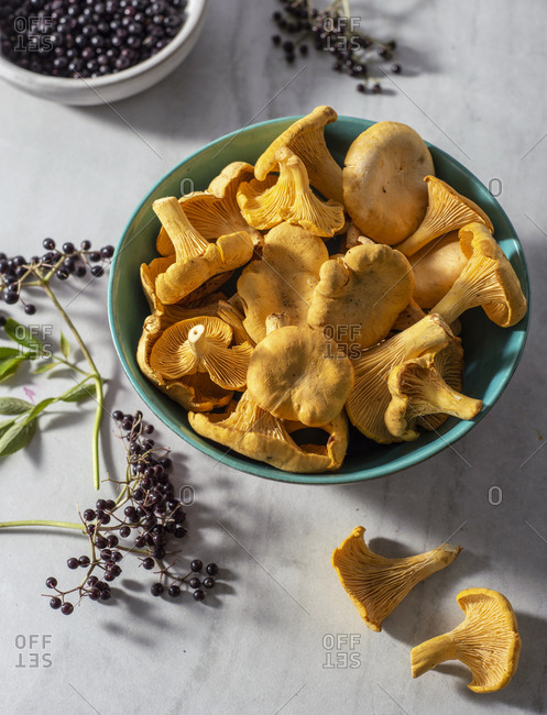 Freshly foraged yellow chanterelles and elderberries in bowls on a marble surface.