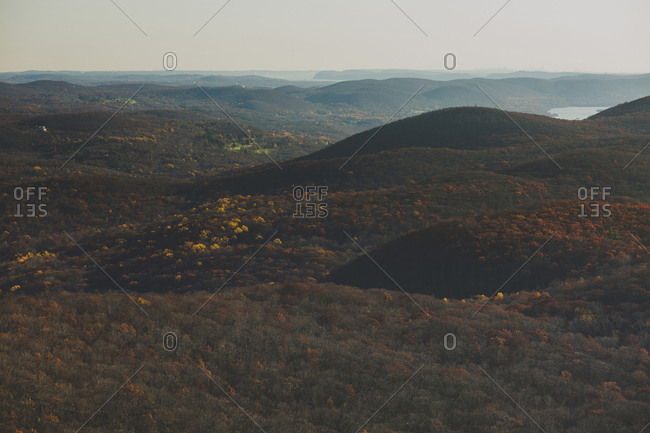 Scenic view of trees growing on mountains against clear sky during sunset