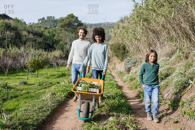 Family walking on a dirt track- pushing wheelbarrow- full of fresh vegetables