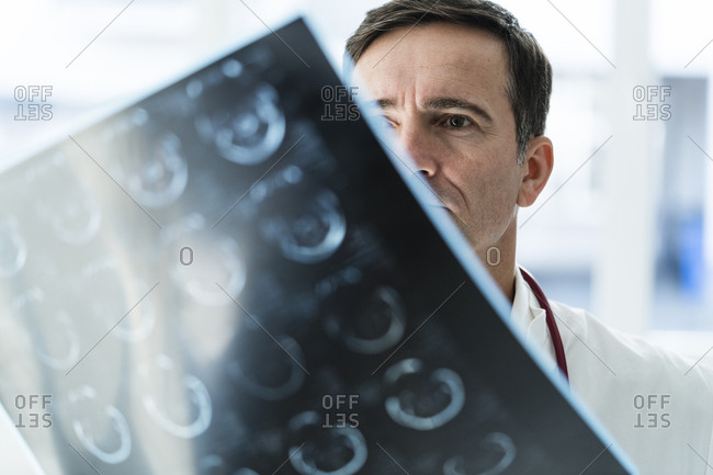 Doctor examining MRT image in medical practice