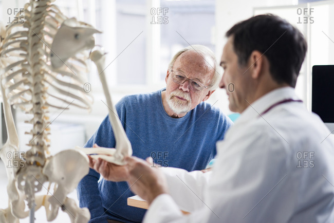 Doctor explaining bones at anatomical model to patient in medical practice