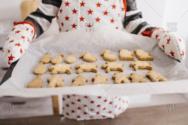 Boy holding baking tray with home-made cookies- partial view
