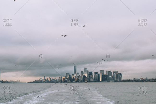 USA- New York- Panorama of Manhattan skyline- birds fly