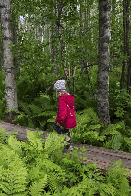 Finland- Kuopio- girl walking in a birch forest