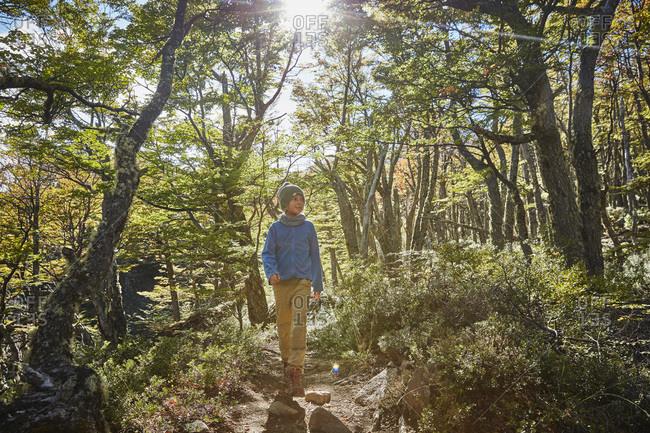Chile- Cerro Castillo- boy on a hiking tour in forest