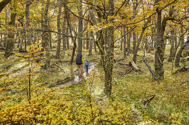 Argentina- Patagonia- El Chalten- mother and son hiking in autumnal forest