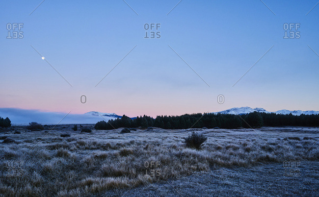 Argentina- Patagonia- Esquel- Laguna La Zeta- steppe landscape with hoarfrost at twilight