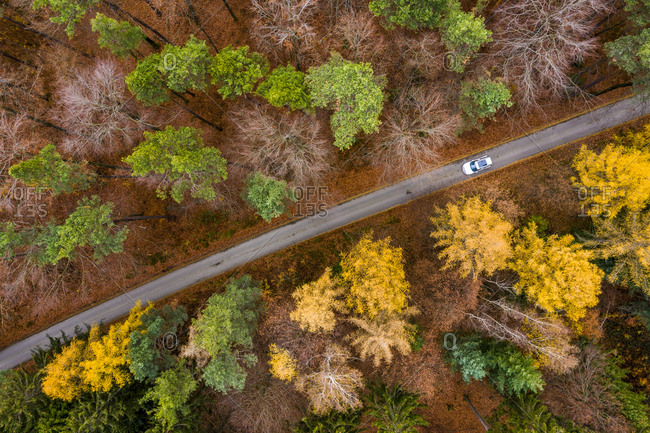 Germany- Baden-Wuerttemberg- Swabian Franconian forest- Aerial view of forest in autumn- forest road