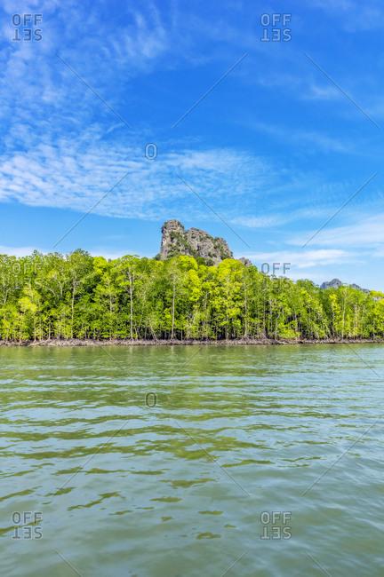 Malaysia- Pulau Langkawi- Mangroves