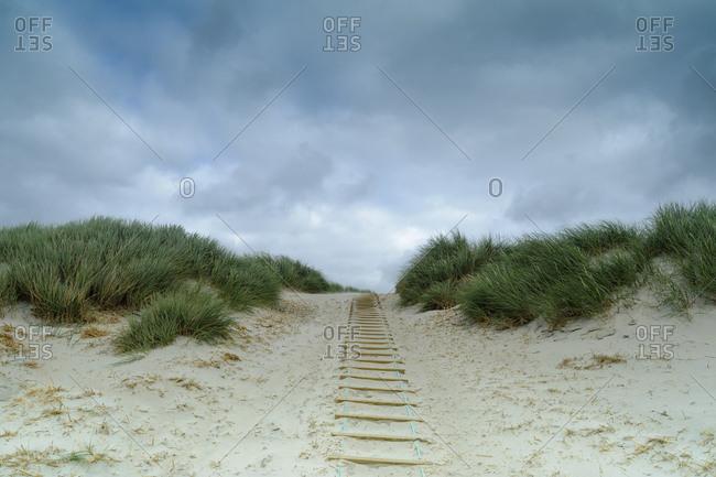 Denmark- Jutland- Henne Strand- dune landscape