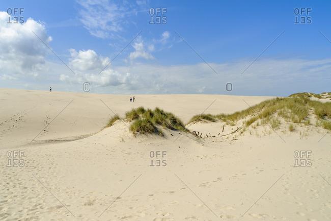 Denmark- Jutland- Rabjerg Mile shifting dune
