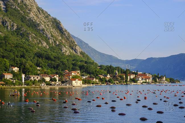 Montenegro - June 20, 2018: Bay of Kotor- Ljuta