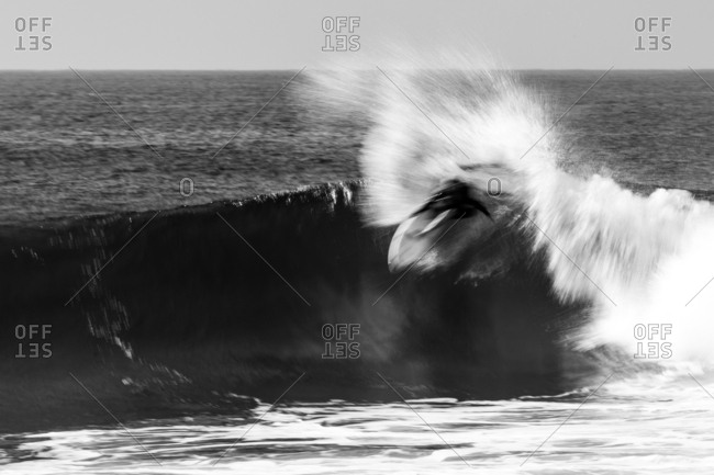 Surfer riding a wave in black and white