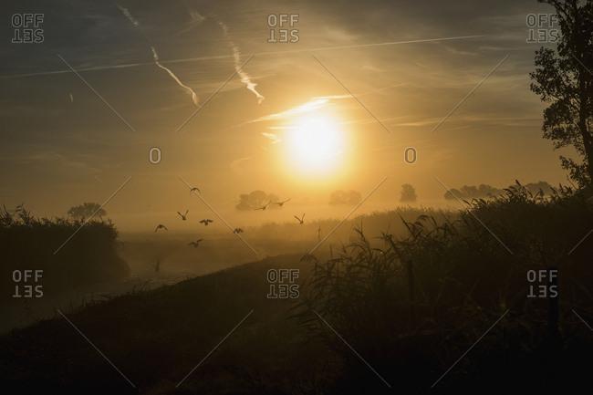 Sunrise over idyllic, tranquil farmland