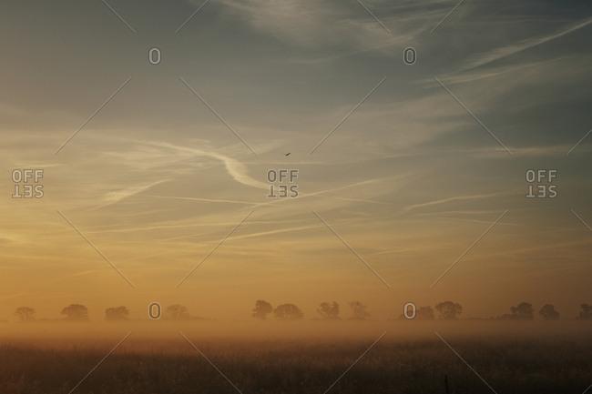 Idyllic sunrise over farmland, Leopoldshagen, Mecklenburg-Vorpommern, Germany