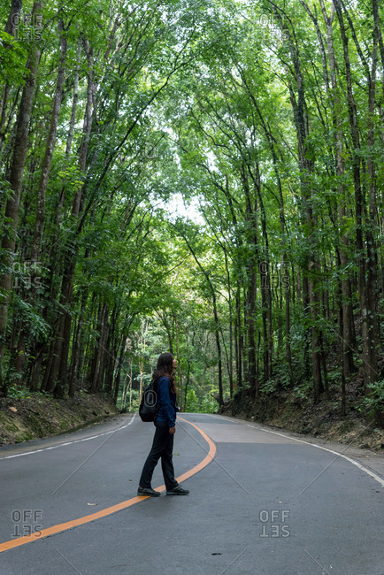 Exploring a road surrounded by densely planted mahogany trees in Man Made Forest. Bohol, Visayas, Philippines