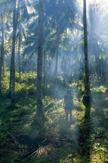 Woman in a palm trees field in smoke with sun rays in Siargao, Philippines
