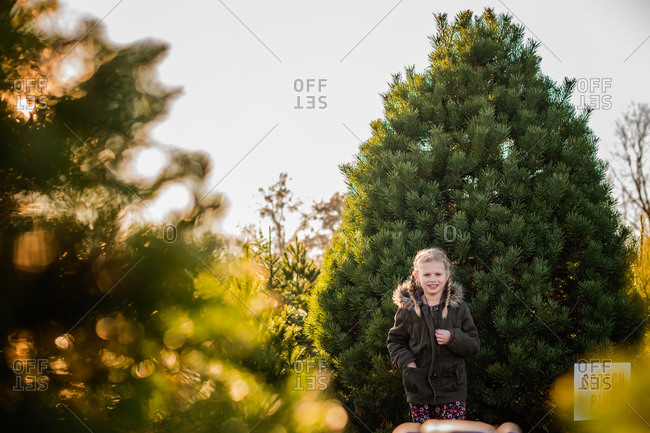 Portrait of a little girl on a tree farm at Christmas time