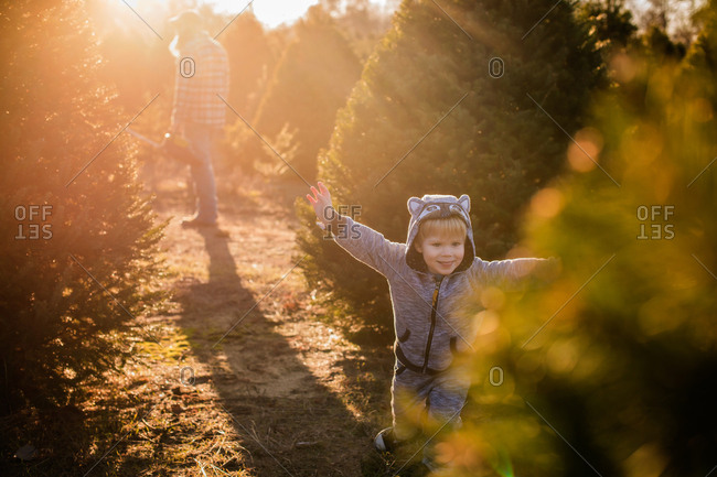 Toddler boy playing around on a tree farm at Christmas time
