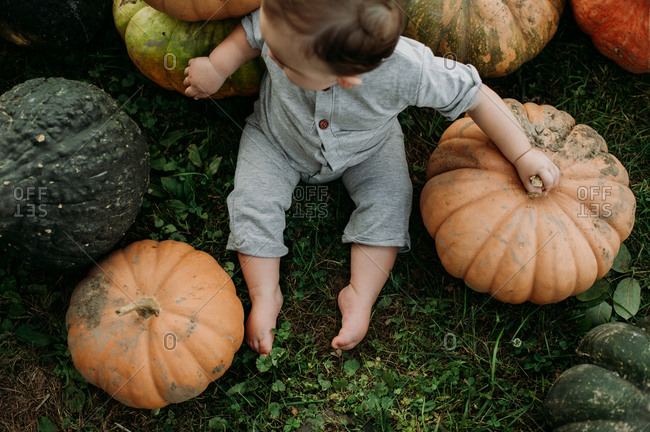 Overhead view of baby sitting in a pumpkin patch