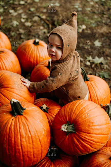 Baby wearing brown sweater at a pumpkin patch