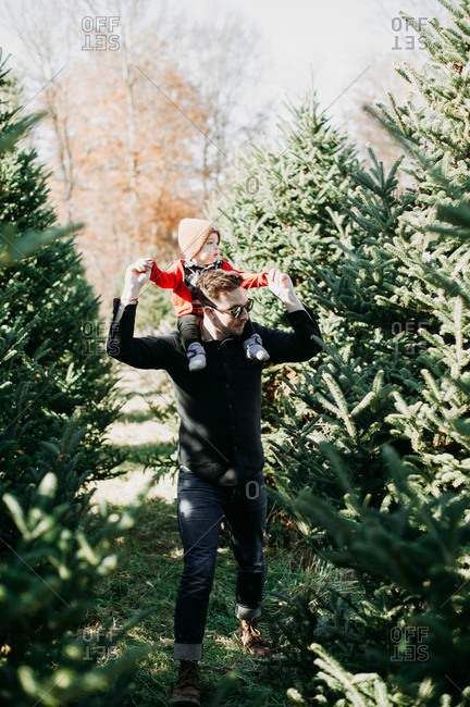 Father and baby looking for tree on a Christmas tree farm
