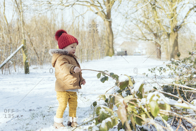 Boy playing with wooden stick in snow