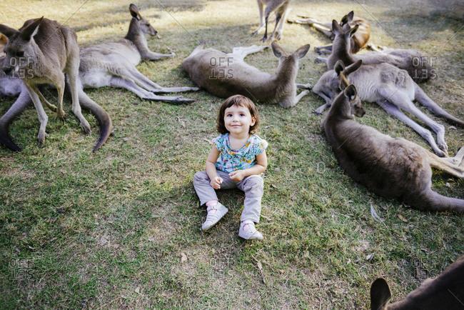 Australia- Brisbane- portrait of smiling little girl sitting on a meadow between tame kangaroos
