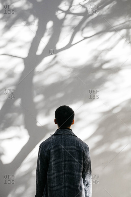 Back view of man looking on wall covered with shadows of a tree