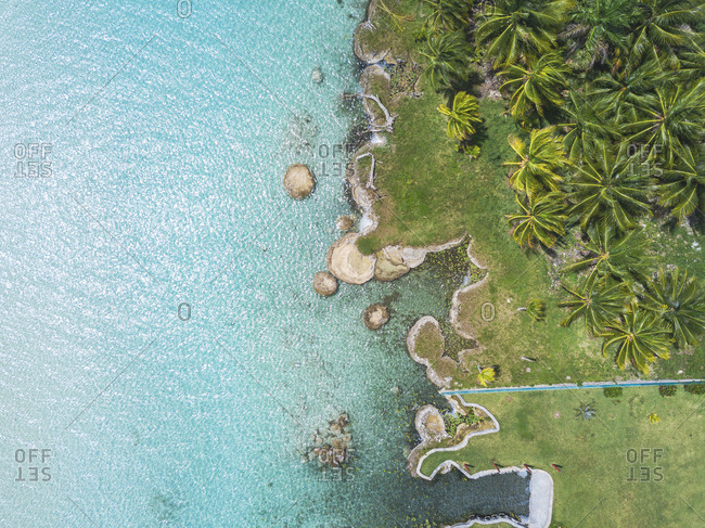 Mexiko- Yucatan- Quintana Roo- lagoon of Bacalar- palm treee at turquoise water- drone image
