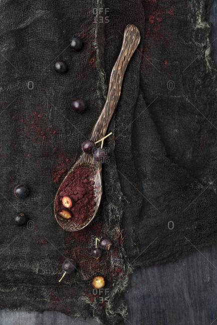 Spoon of Aronia powder and chokeberries on black cloth