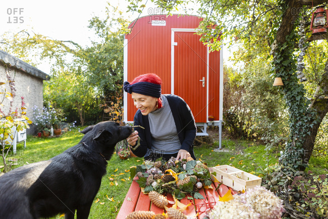 Smiling senior woman with red dyed hair stroking her dog while tinkering autumnal decoration