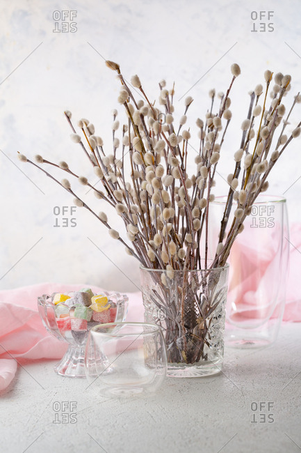Bunch of pussy willow in glass