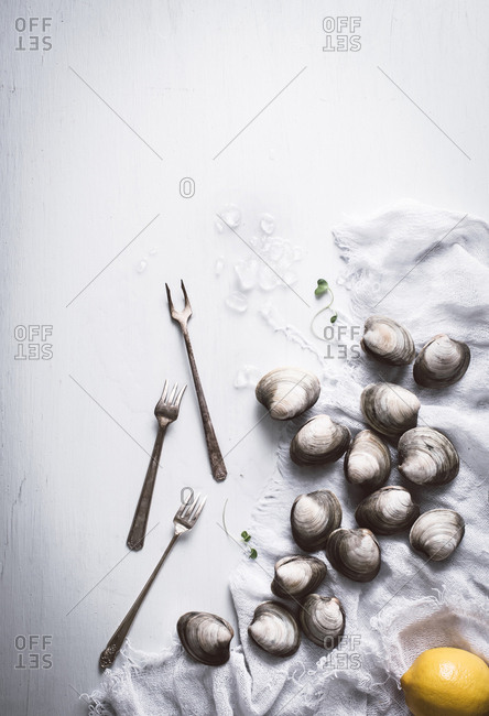 Clams arranged with forks on a table