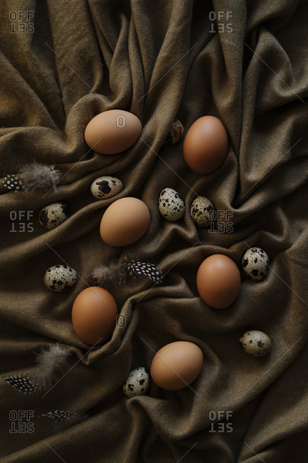 Multiple eggs and feathers set on brown sheet