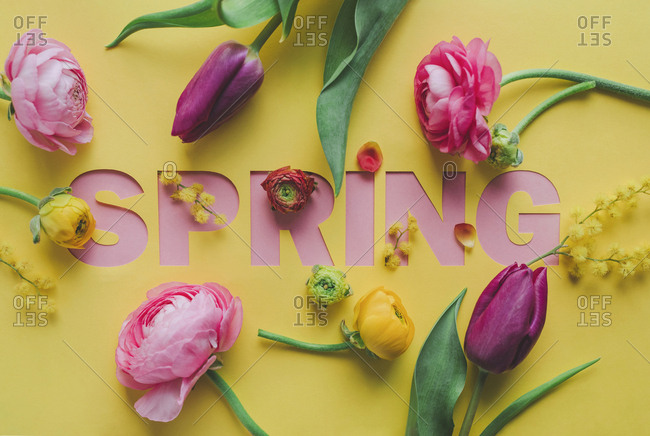 Yellow background with cut-out word of spring set with flowers.