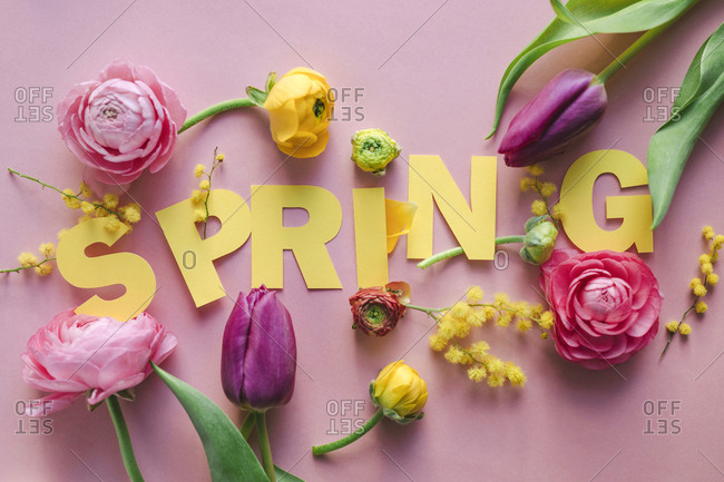 Yellow letters spelling out spring on pink background with flowers