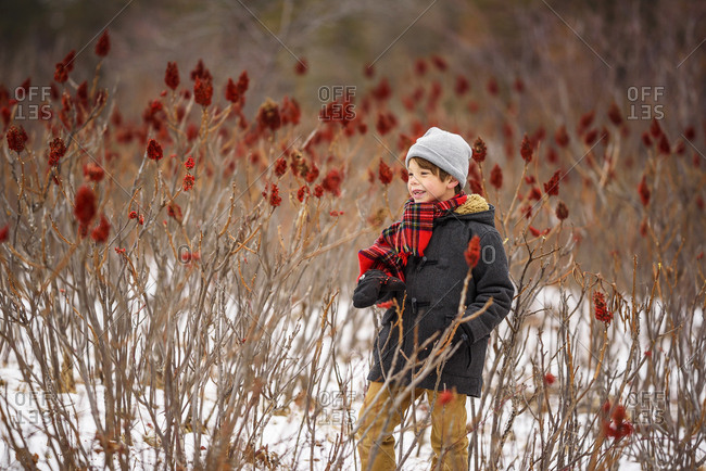 Little boy with a red scarf looking at red sumac