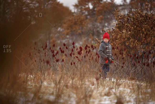 A young boy playing in a field of sumac